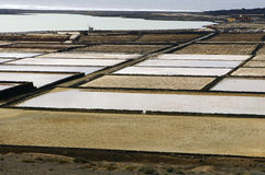 Saline on the canary island of Lanzarote Royalty Free Stock Photography