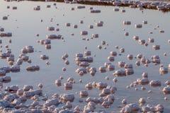Saline evaporation ponds Royalty Free Stock Image