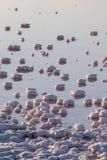Saline evaporation ponds Royalty Free Stock Photography