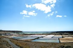 Saline from Janubio, Lanzarote, Spain Stock Photos