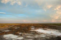 Saline land in Gobi desert Stock Photo
