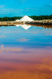 Saline on Mallorca, Ses Salines Royalty Free Stock Images