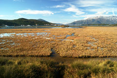 Saline in Tivat Royalty Free Stock Image