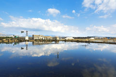 Saline of Trapani Royalty Free Stock Image