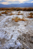 Saline Wasteland. The saline wasteland in Death Valley National park Stock Images