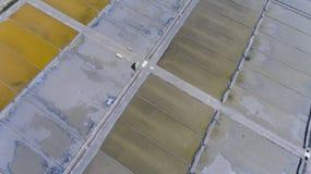 Salinende Aveiro, eine der Ikonen von Aveiro, zum des Salzes zu produzieren Marina da Troncalhada lizenzfreie stockbilder