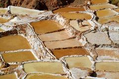 Salineras de Maras, miniere di sale incredibili nel canyon della valle sacra delle inche, regione di Cusco, Perù fotografia stock