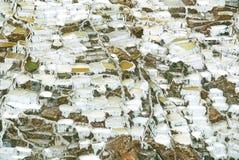 Salines Pérou de Las Photographie stock libre de droits