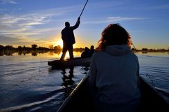 Saling i den Okavango deltan på solnedgången, Botswana Royaltyfri Foto