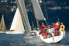 Sailboat Racing on Puget Sound. Salinig Races in the Pacific Northwest USA on clear, sunny day with light winds Royalty Free Stock Photo
