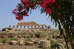 Salinunte - Sicília Imagem de Stock Royalty Free