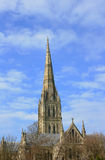 Salisbury cathedral. Portrait image of Salisbury Cathedral, Wiltshire England. View from Bishop Wordsworth's School Royalty Free Stock Photos