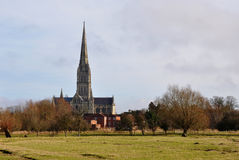 Salisbury Cathedral and Ancient Water Meadows Royalty Free Stock Photography