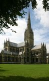 Salisbury Cathedral England. Salisbury Cathedral tree framed. One of Englands many Cathedrals with church steeples that seem to reach for the sunshine sky Royalty Free Stock Photos
