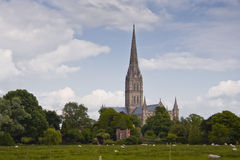 Salisbury cathedral Royalty Free Stock Photos