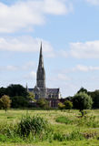 Salisbury Cathedral from Water Meadows, Wiltshire, England. Salisbury Cathedral from the ancient water meadows, Wiltshire, England. A pastoral scene painted by royalty free stock photo