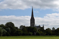Salisbury Cathedral from Water Meadows, Wiltshire, England. Salisbury Cathedral from the ancient water meadows, Wiltshire, England. A pastoral scene painted by royalty free stock photos