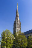 Salisbury Cathedral Wiltshire England UK Royalty Free Stock Photo