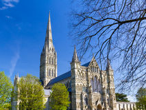 Salisbury Cathedral Wiltshire England UK Stock Photography
