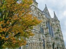 Salisbury domkyrka Royaltyfri Fotografi