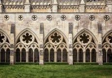 Salisbury domkyrkakloster Royaltyfria Bilder