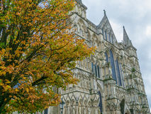 Salisbury katedra fotografia royalty free