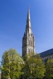 Salisbury Katedralny Wiltshire Anglia UK zdjęcie royalty free