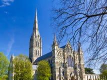 Salisbury Katedralny Wiltshire Anglia UK fotografia stock