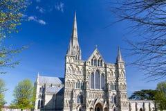 Salisbury Katedralny Wiltshire Anglia UK zdjęcia stock