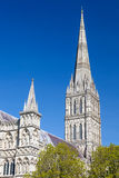 Salisbury Katedralny Wiltshire Anglia UK fotografia royalty free
