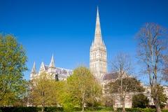 Salisbury Katedralny Wiltshire Anglia UK obraz royalty free