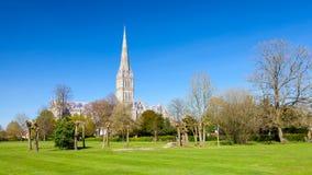 Salisbury Katedralny Wiltshire Anglia UK obrazy royalty free