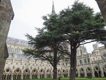 Salisbury-Kathedrale in Salisbury lizenzfreies stockbild
