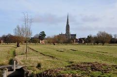 Salisbury-Kathedrale von den alten Wasser-Wiesen Stockbild