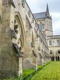 Salisbury-Kathedralenkloster lizenzfreie stockbilder