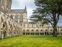 Salisbury-Kathedralenkloster lizenzfreies stockbild