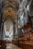 Salisbury organów Nave HDR Katedralna fotografia Zdjęcia Royalty Free
