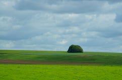 Salisbury Plain. The beautiful English downland of Salisbury Plain Royalty Free Stock Images