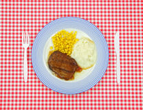 Salisbury steak dinner on red checkerboard cloth Royalty Free Stock Photo