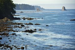 Salish Sea Coast Royalty Free Stock Images