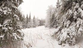 Salita di inverno al iremel della montagna Repubblica di Bashkortostan fotografia stock libera da diritti