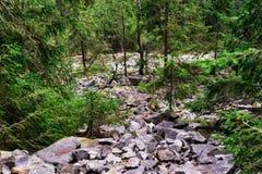 Salita rocciosa la montagna Fotografie Stock