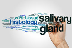 Salivary gland word cloud Stock Photo