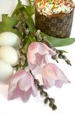 Salix del tulipano del dolce dell'uovo di Pasqua Fotografie Stock Libere da Diritti