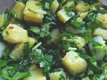 Sallad av kokta potatisar med l?kar och r?d peppar royaltyfria bilder