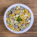 Sallad av potatisen, champinjoner, gurkan, löken, moroten och havre i platta close upp Arkivbild