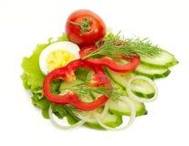 sallad för gurkadillägg till tomaten Royaltyfri Bild