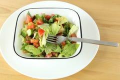 Sallad för ny grönsak Arkivbilder