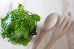 Sallad för ny grönsak med den gröna eken och raket med den träskeden och gaffeln arkivfoto