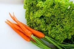 Sallad för ny grönsak med moroten Fotografering för Bildbyråer